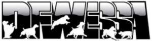 DFWESSA Logo