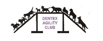 DenTex Logo-LARGE